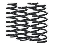 OME COIL SPRINGS, REAR